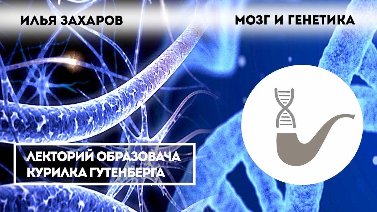Илья Захаров: мозг и генетика