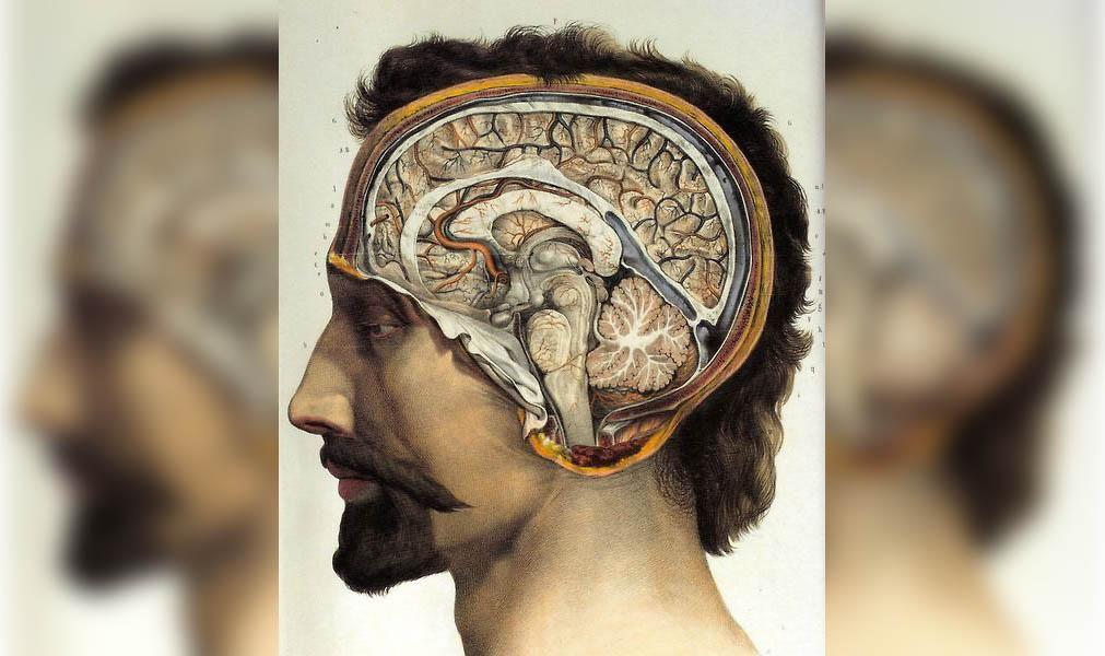об исследованиях мышления в когнитивной психологии