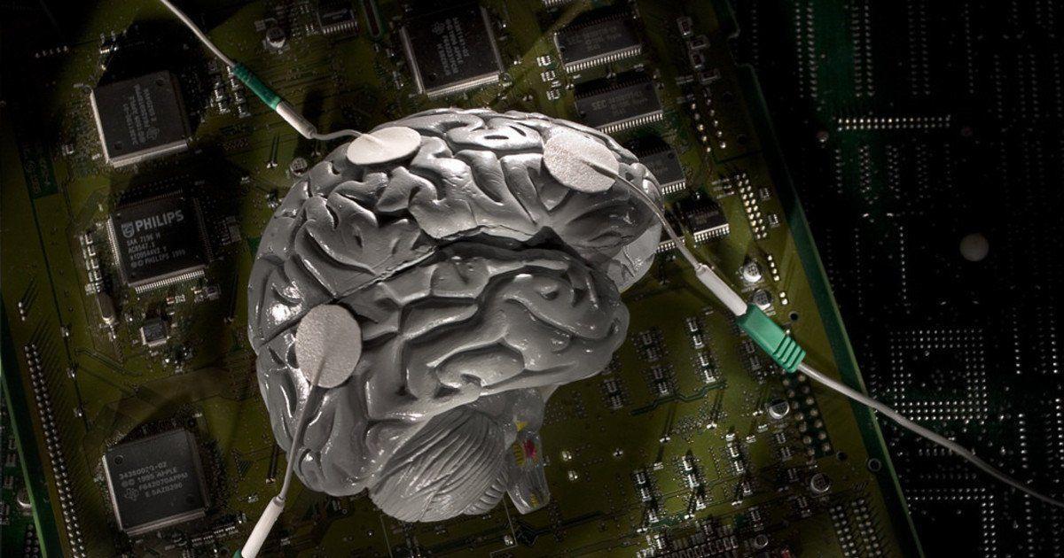почему у тебя такой большой мозг