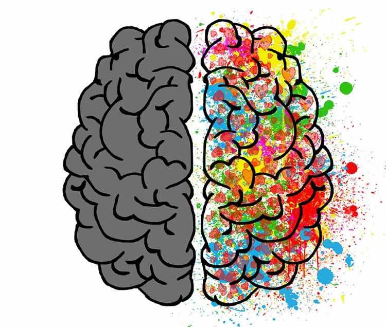 обнаружен синдром «расщепленного» мозга