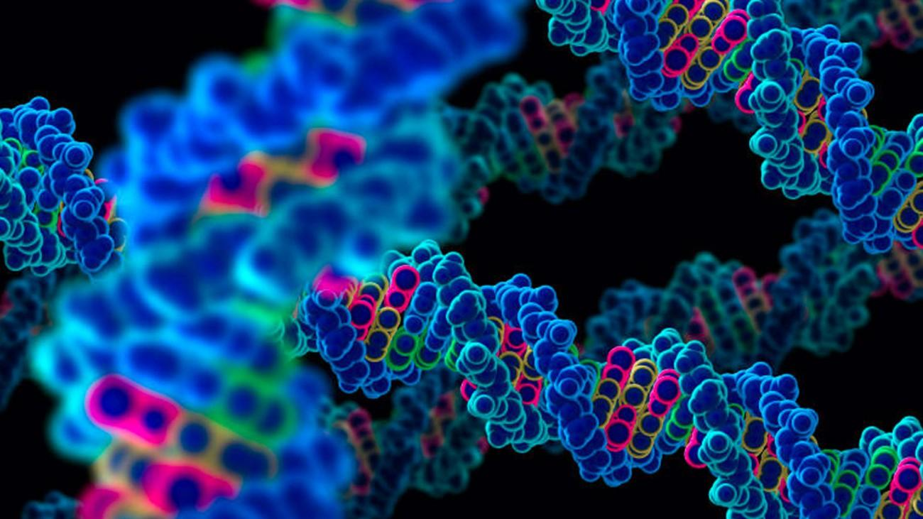 Тревожно-депрессивное расстройство меняет активность генов в мозге