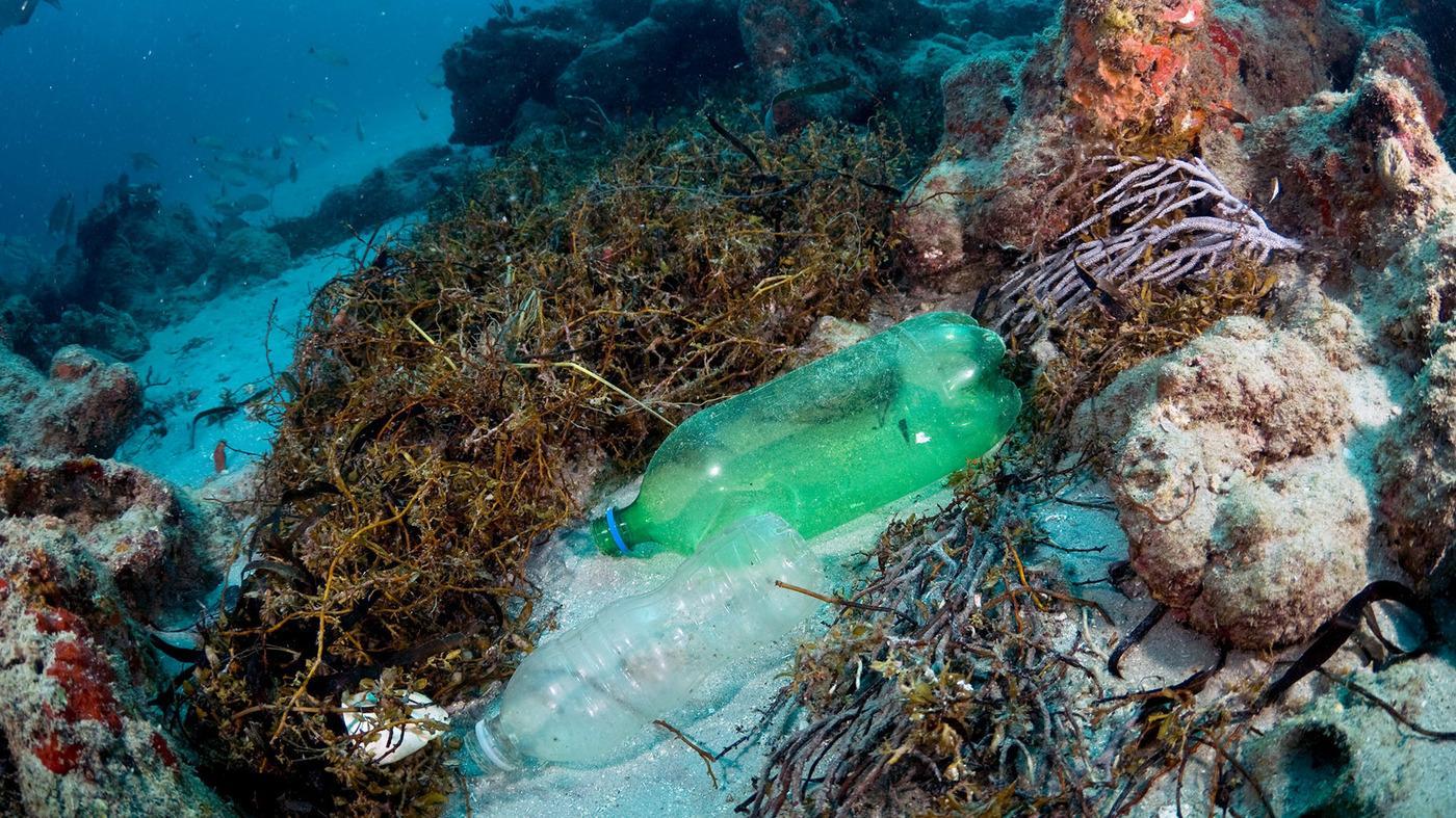 Учёные измерили количество пластика в океанах