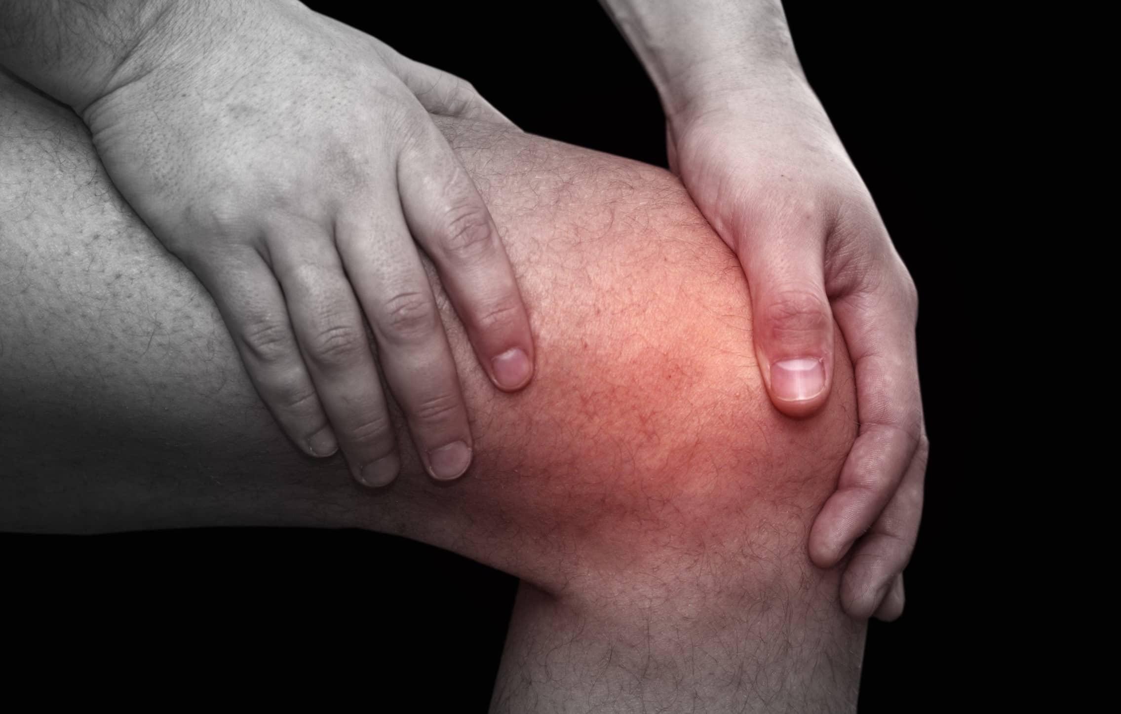 Хрящи для коленного сустава будут выращивать в носу