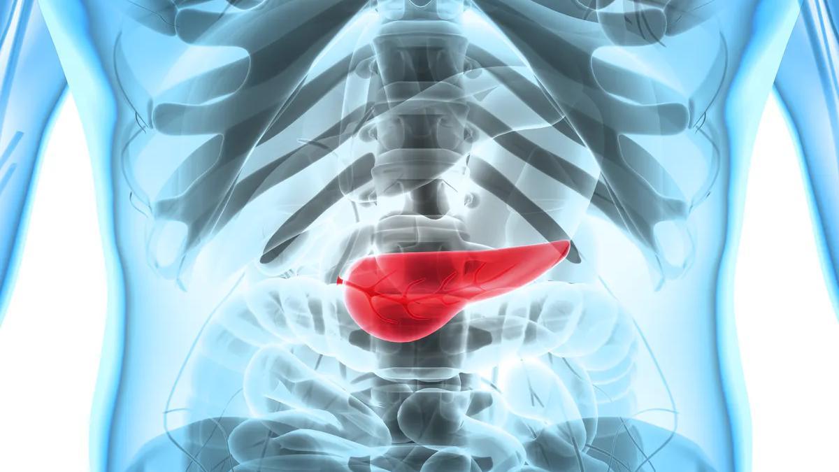 Уменьшение жира в поджелудочной железе всего на грамм спасает от диабета второго типа