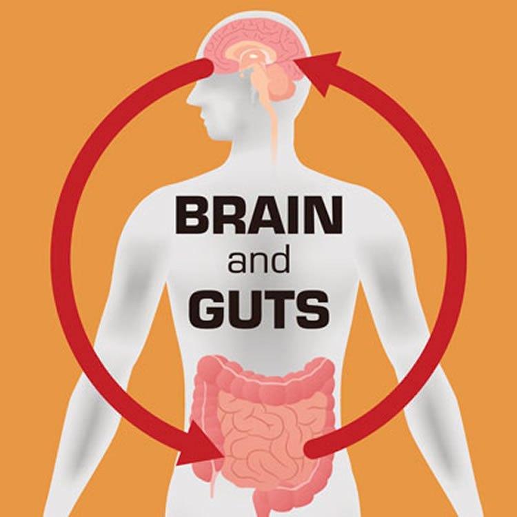 Новые свидетельства связи болезни Паркинсона и микробиоты