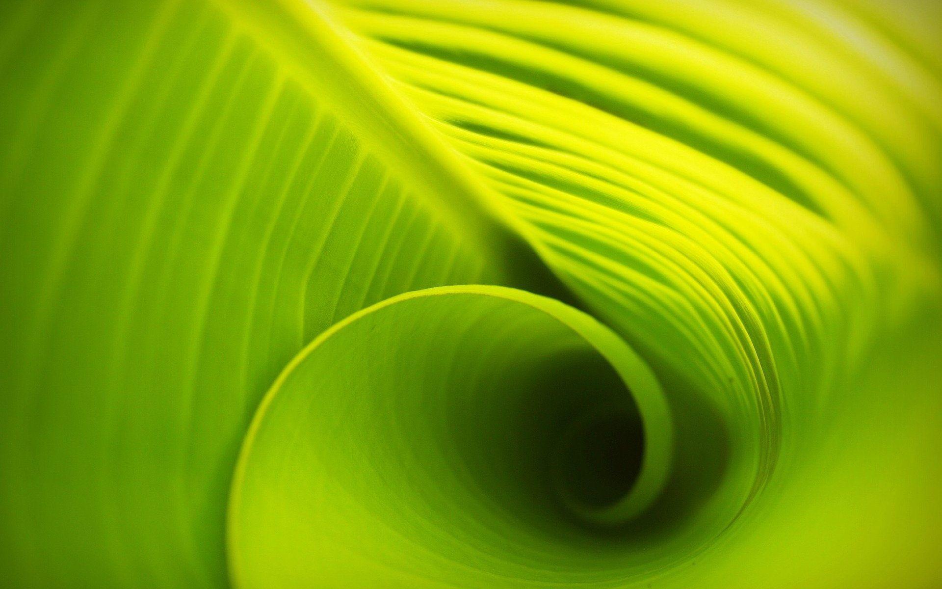 успехи промышленного фотосинтеза