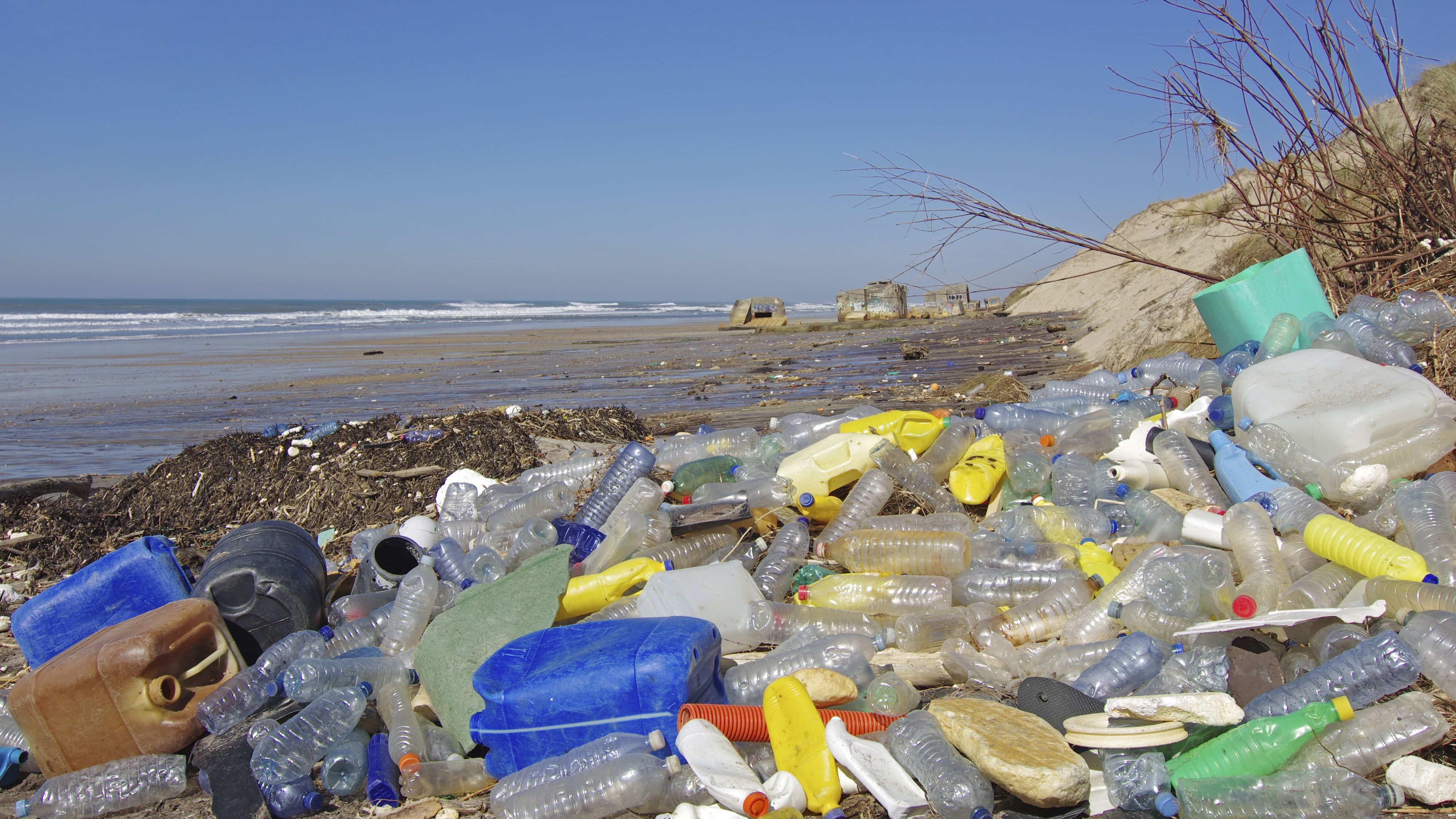 Микроскопические существа, живущие на пластике, влияют на океаны