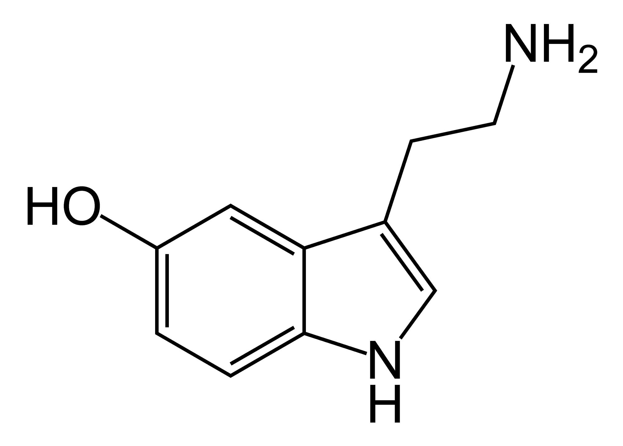 Нейромолекулы: «гормон счастья» серотонин