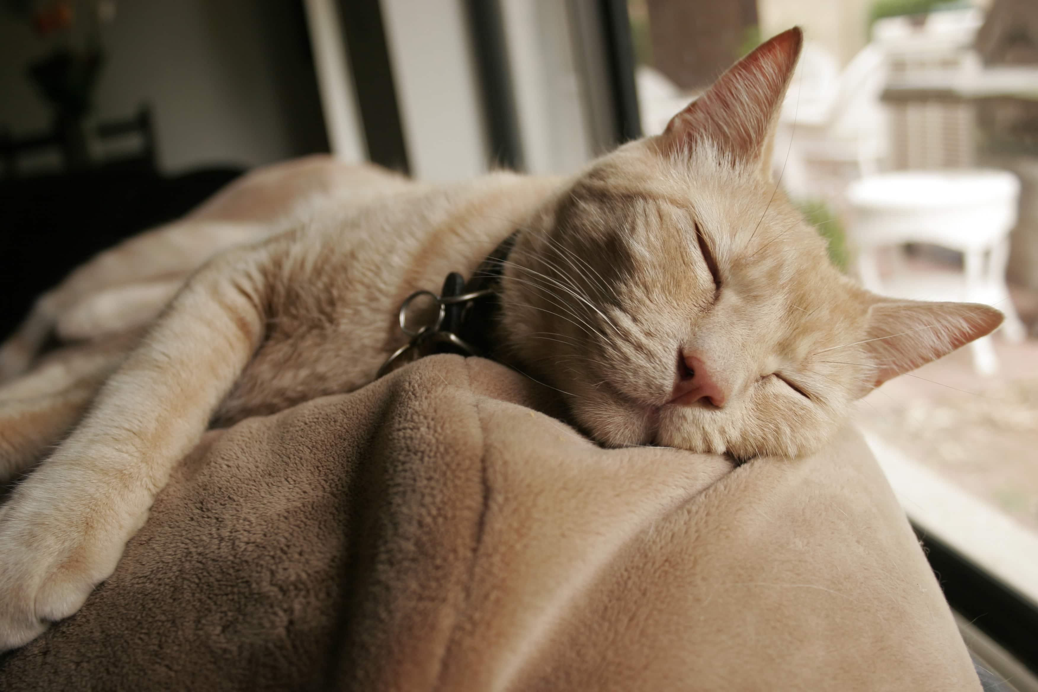 Как недосып вредит межличностным отношениям?