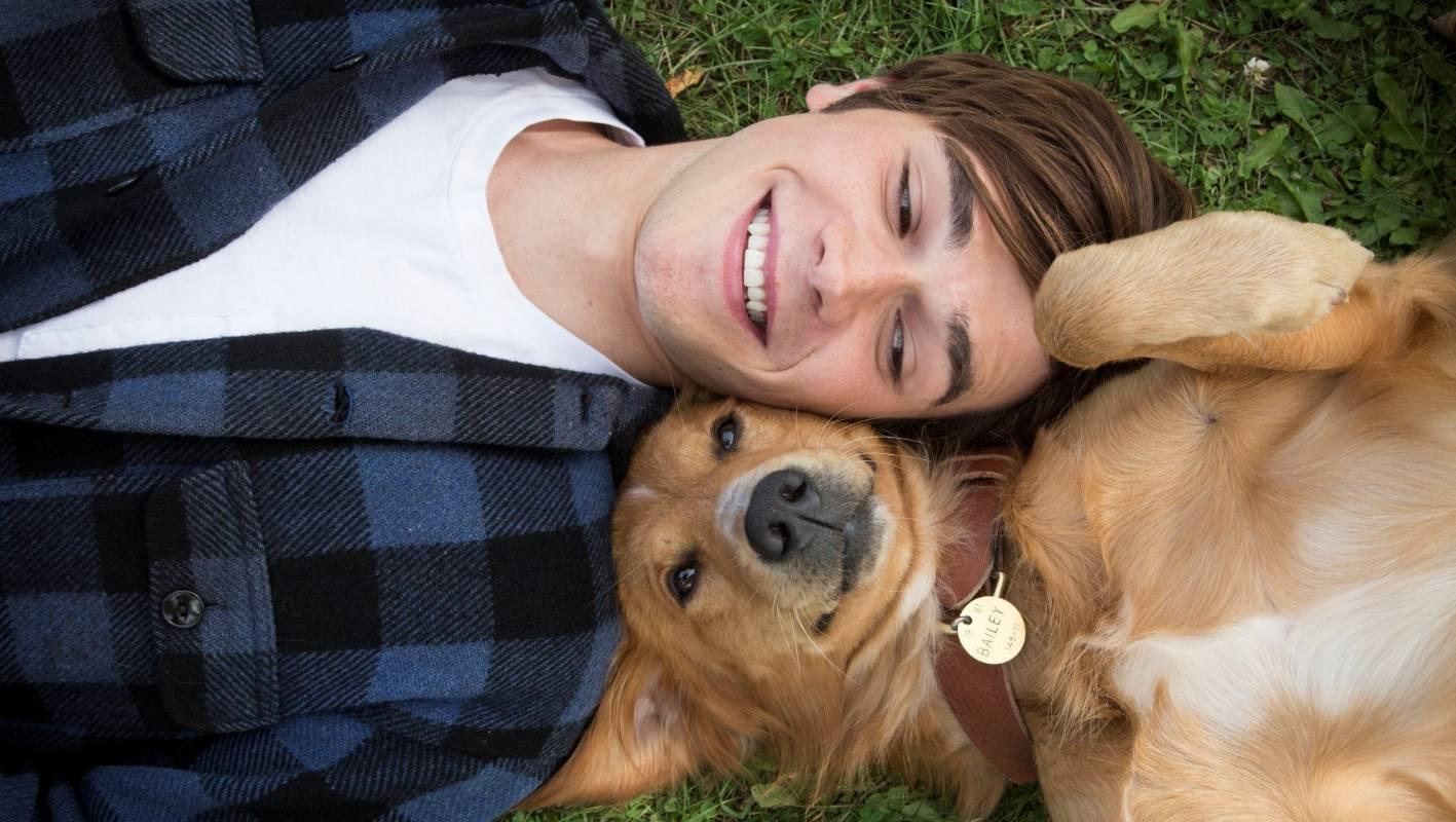 Домашние собаки понимают человеческую мимику и улыбку