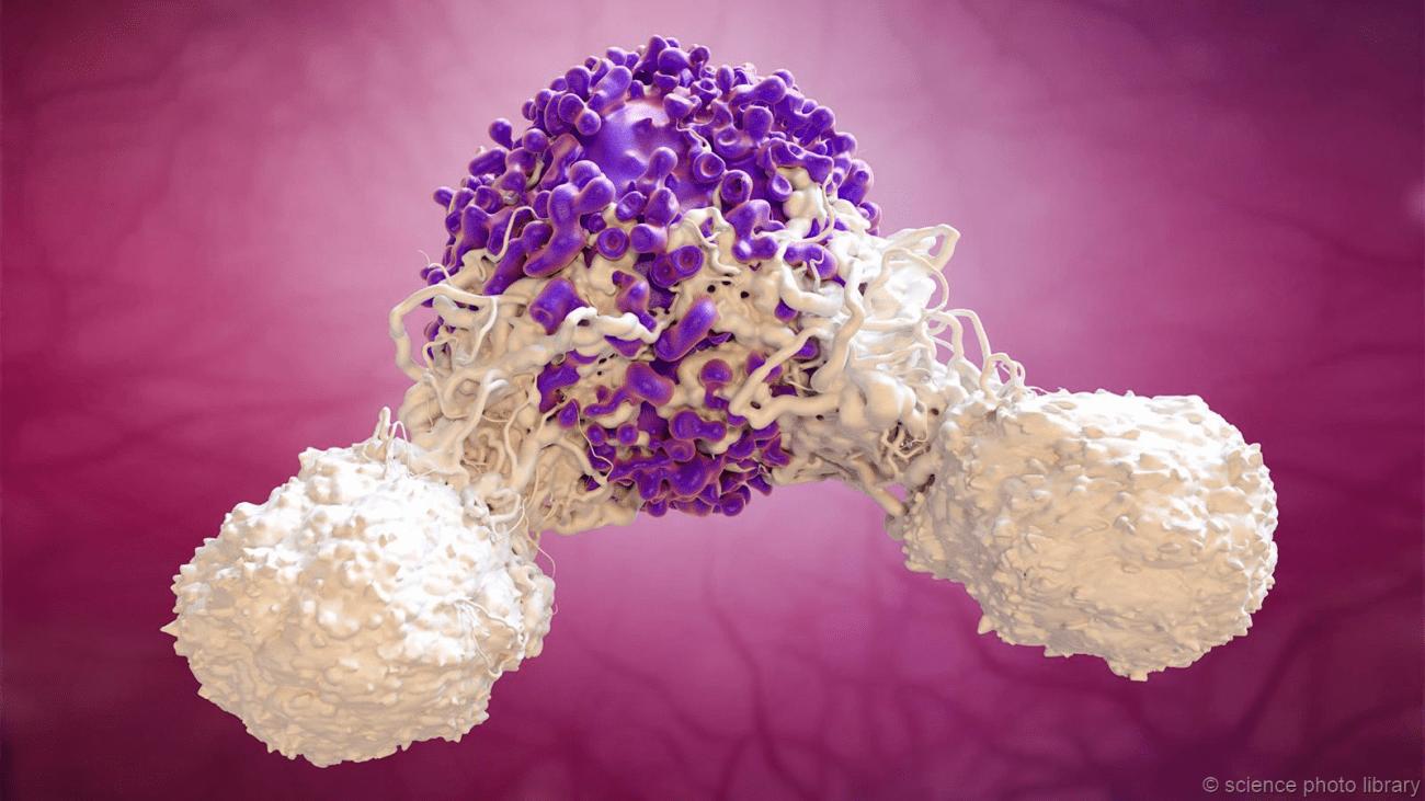 Искусственный вирус из Китая поможет вылечить рак