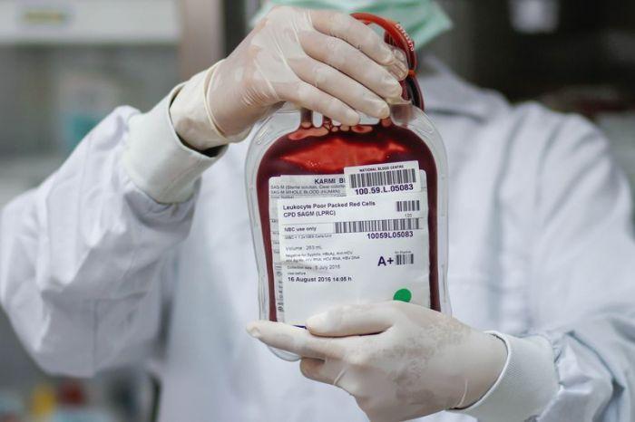 в Калининградской области впервые перелили кровь неродившемуся ребенку
