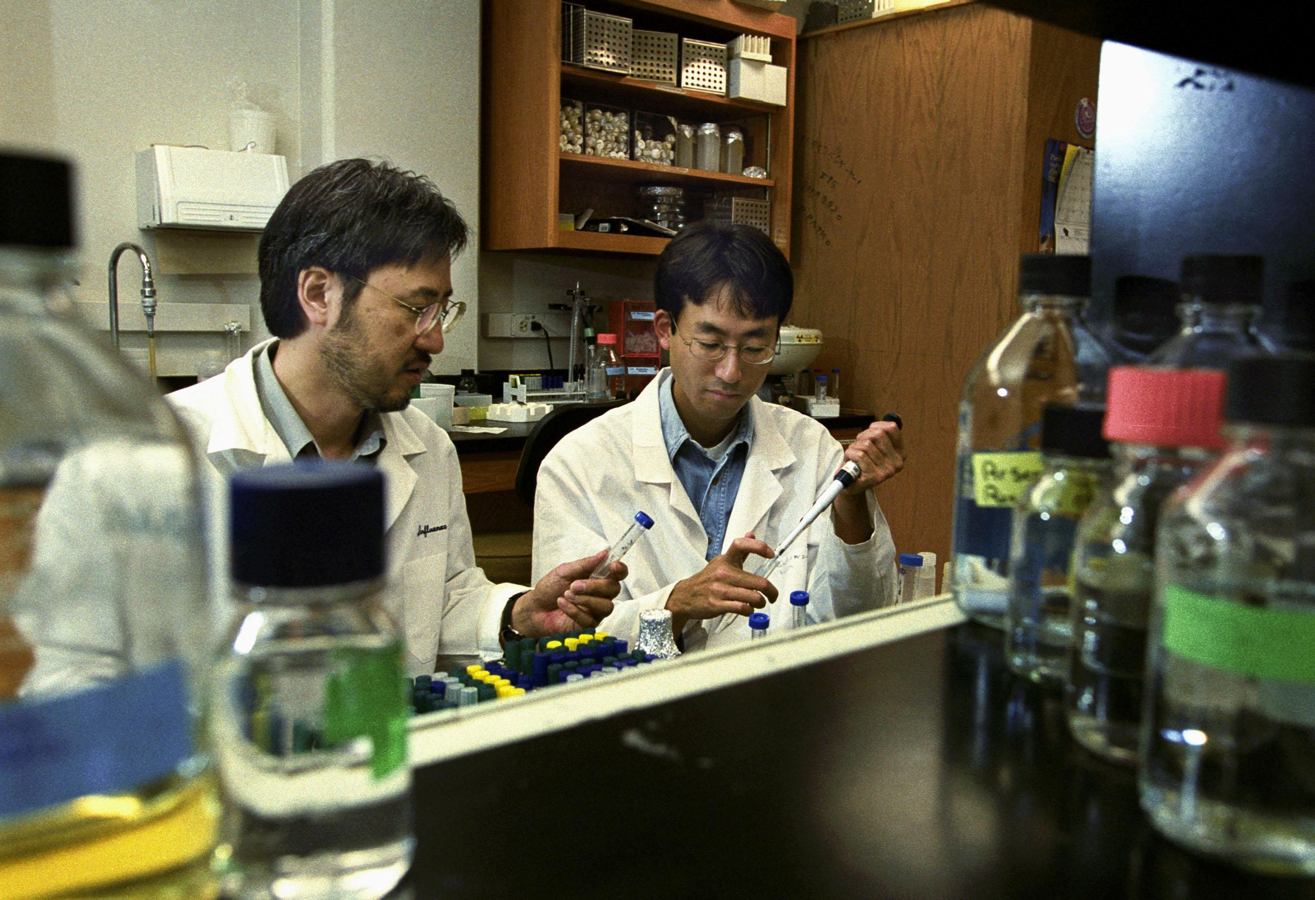 Ученые создали вирус гриппа, способный уничтожить все человечество