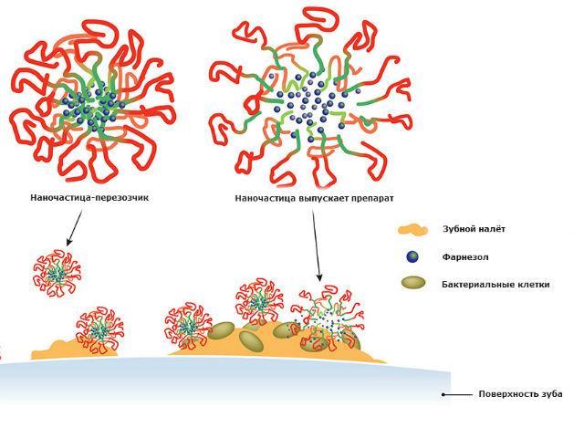 нанотехнологии помогут победить кариес