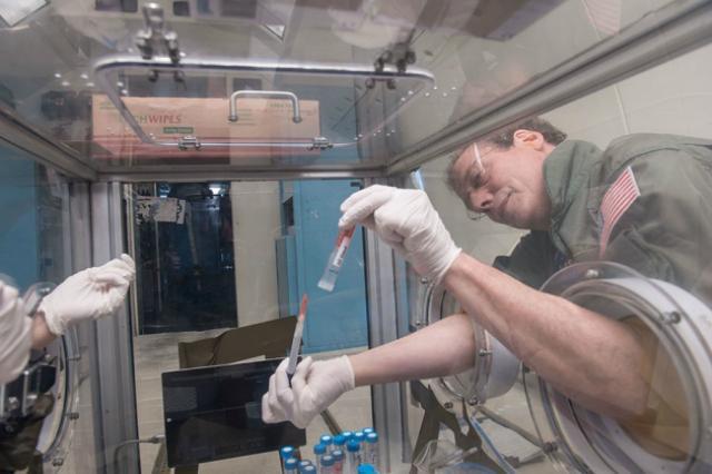 Секвенирование генома будут проводить в космосе