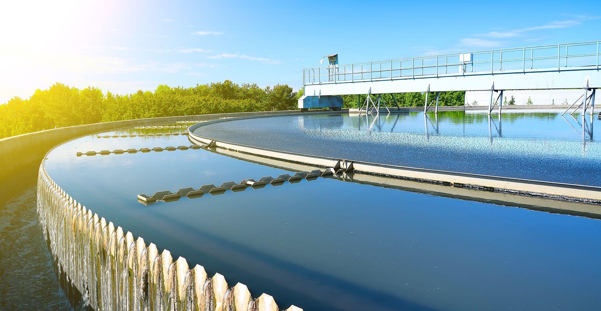 Бактерии готовы превратить стоки в чистую воду и электричество
