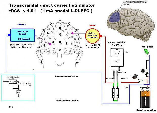 ученые улучшили кратковременную память больных шизофренией