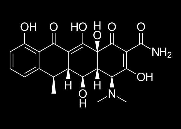 формирование травмирующих воспоминаний ослабили антибиотиком