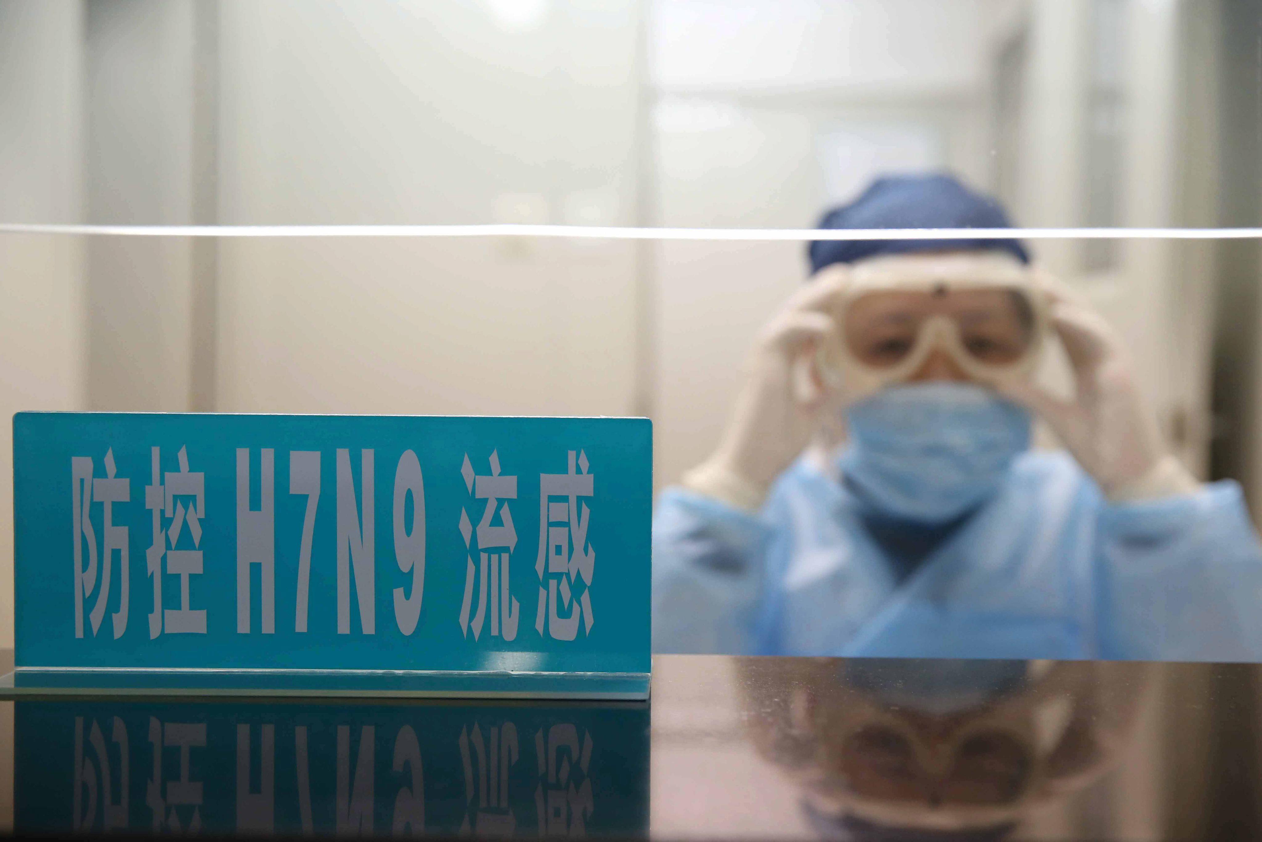 Учёные ищут источник вируса гриппа H7N9