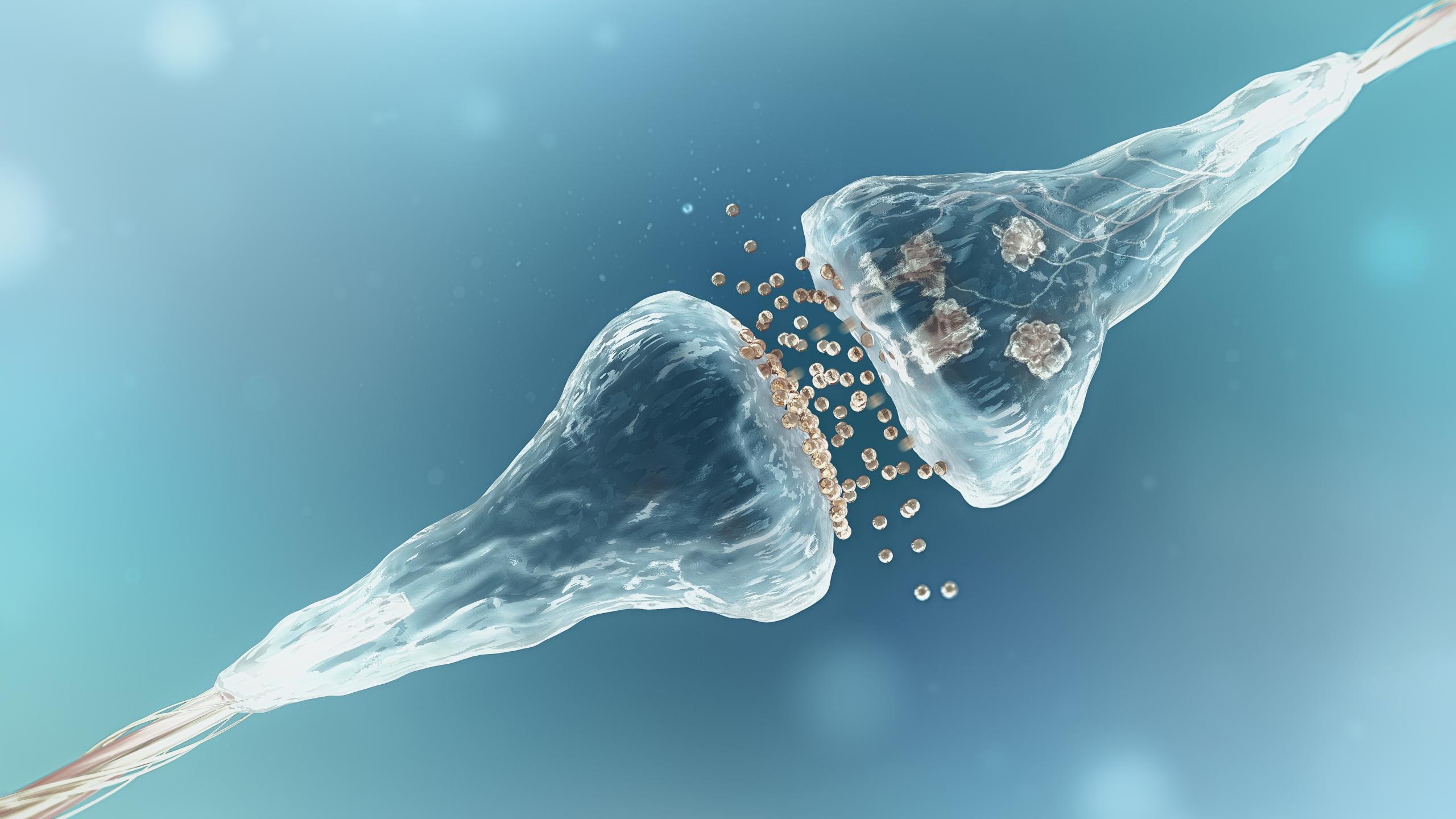 Перепрограммирование нейронов поможет бороться с болезнью Паркинсона