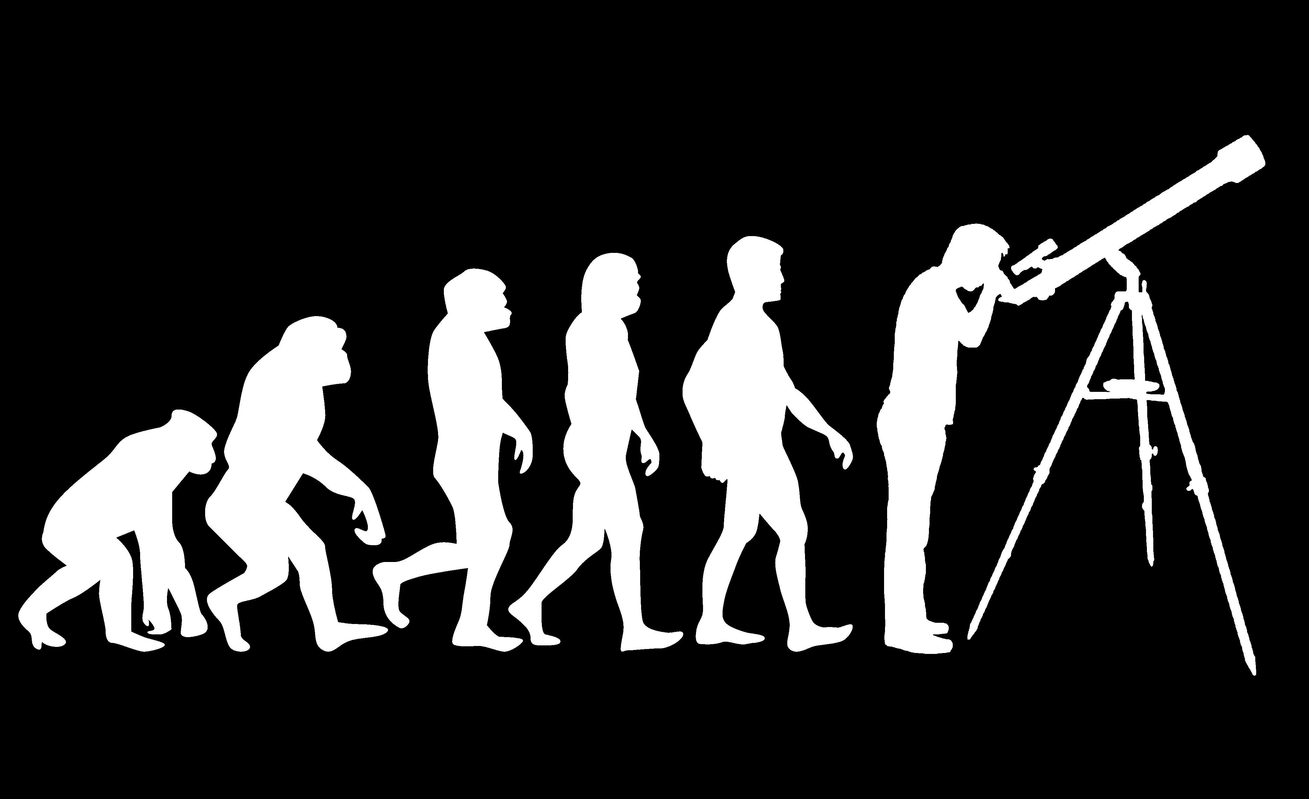Геном приматов сформировался в борьбе с самим собой