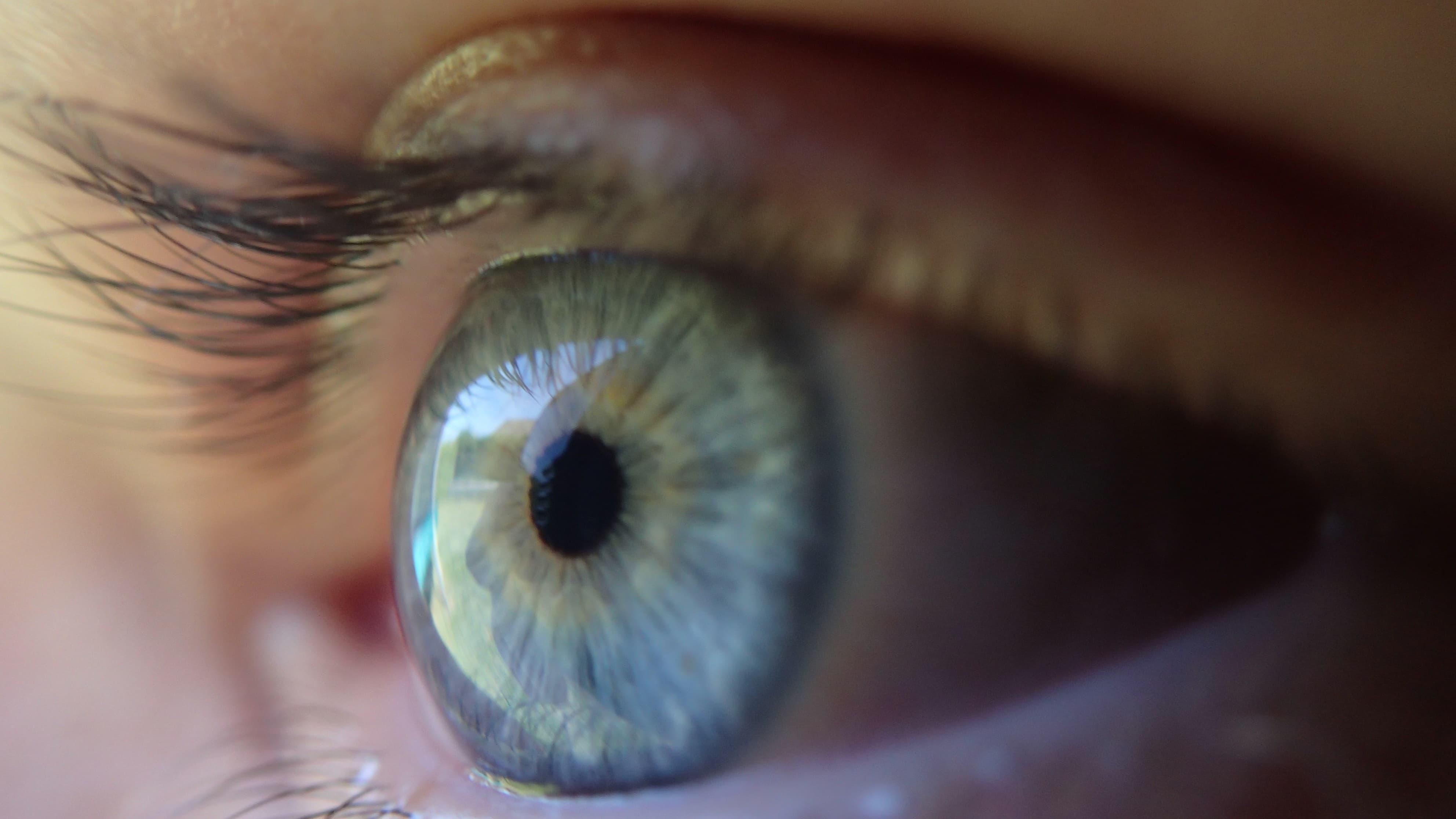 Вылеченные от слепоты дети догнали зрячих в распознавании лиц