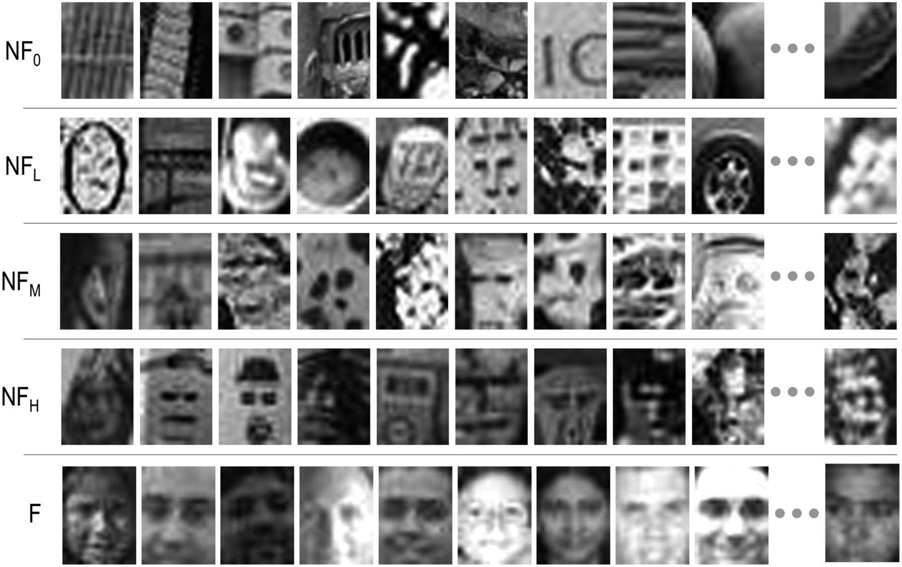 Пять типов изображений, которые использовали при тестировании