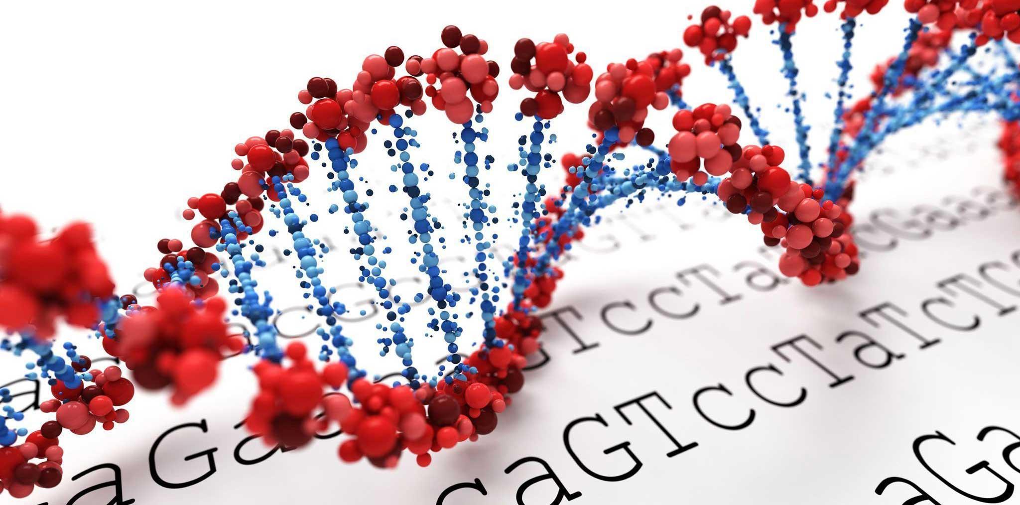 Еще немного об «аутистическом» гене и стрессе