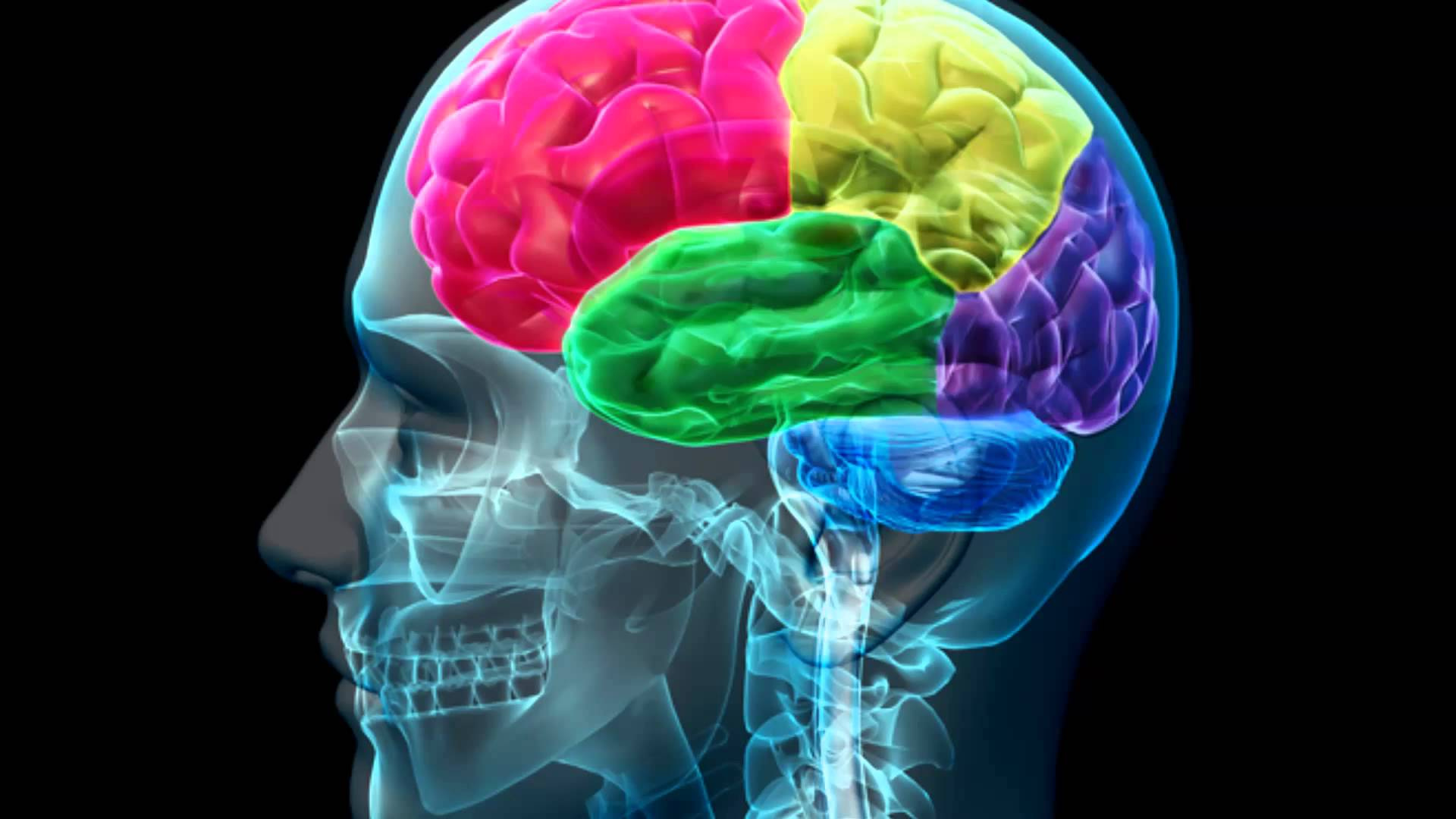 Каждый пятый человек является носителем гена долголетия и ума
