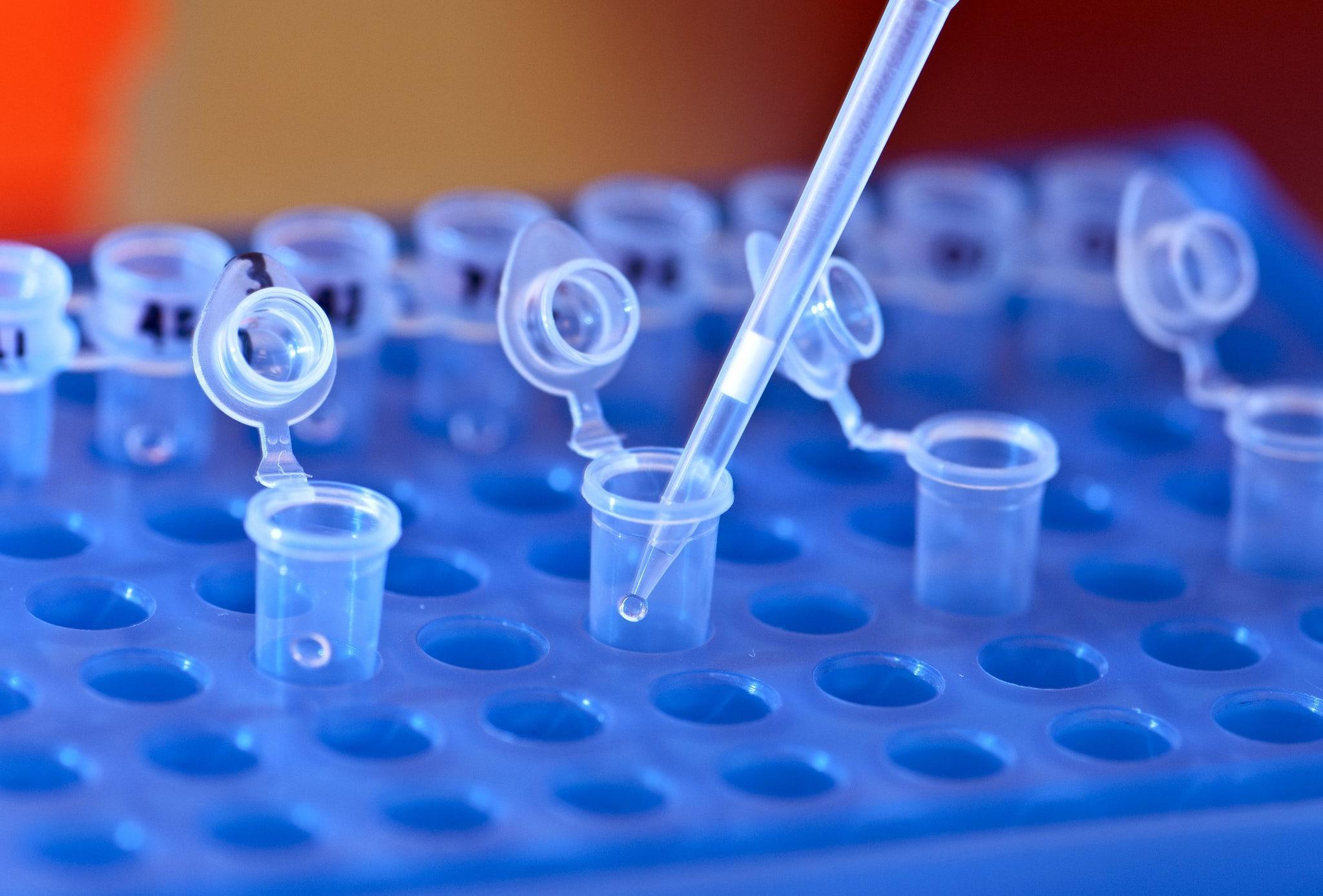 У генетических тестов есть не только медицинский смысл, но и экономический