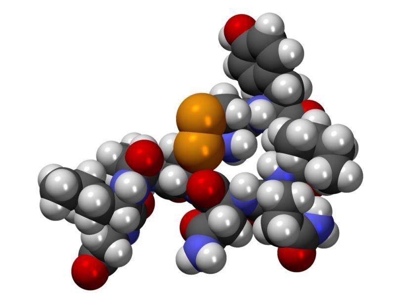 ученые объяснили различное действие окситоцина на мужчин и женщин