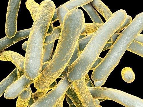 заболеть туберкулезом может и совершенно благополучный человек