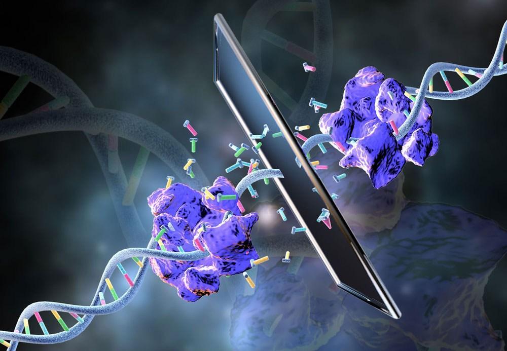 зазеркальная полимераза синтезировала зазеркальную ДНК