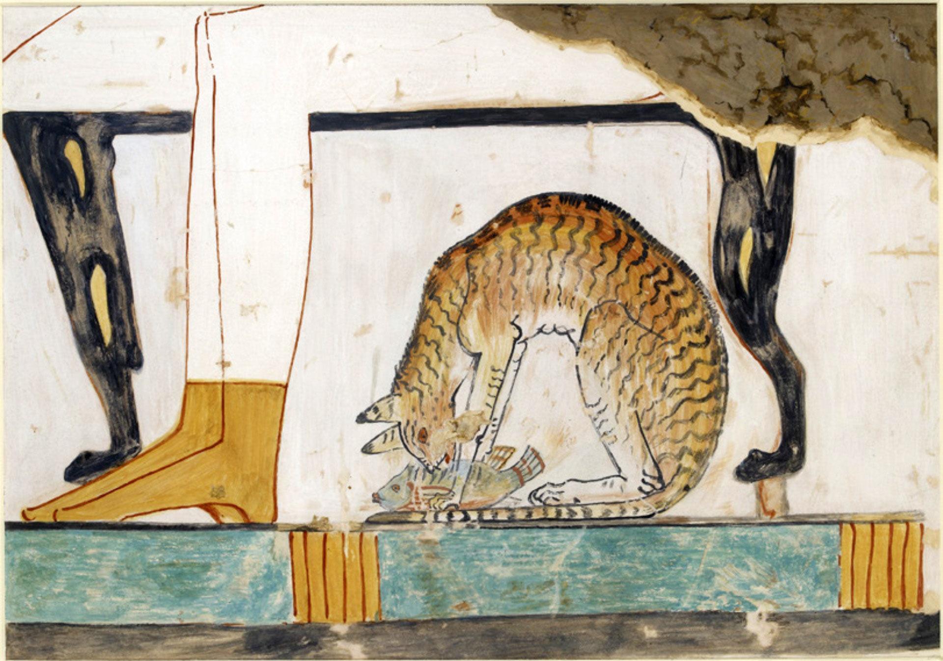 Палеогенетики обнаружили «двойное гражданство» у домашних кошек
