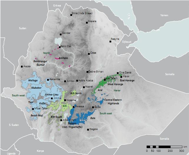 изменение климата сделает эфиопский кофе высокогорным