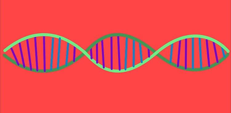 снова гены и аутизм