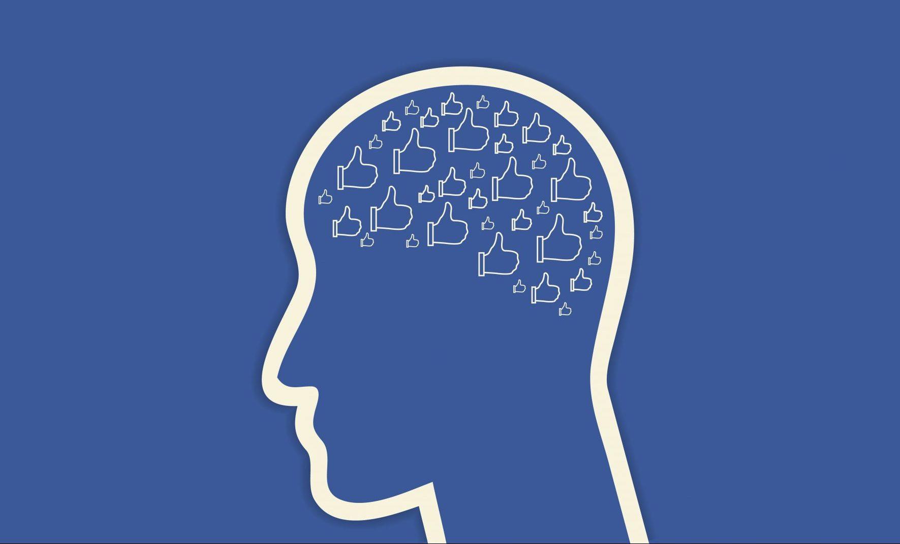 Частое пользование Facebook может сказаться на объёме серого вещества