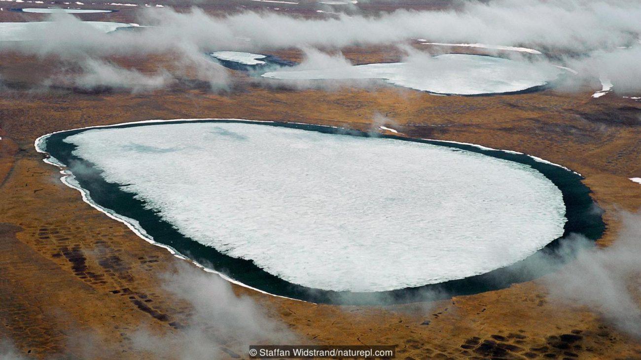 В земных ледниках просыпаются опасные болезни