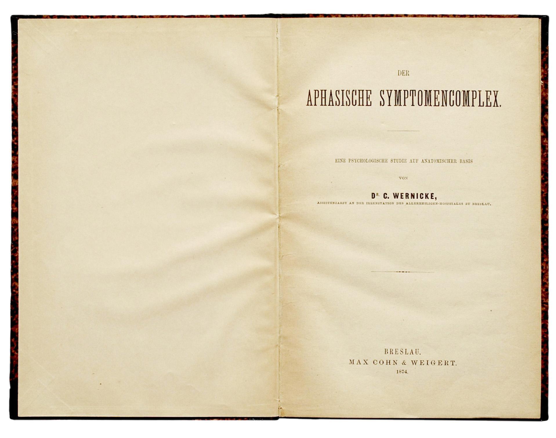 Обложка исторической книги Вернике