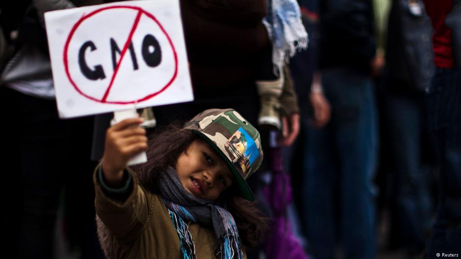 В США опубликован официальный доклад о безвредности ГМО