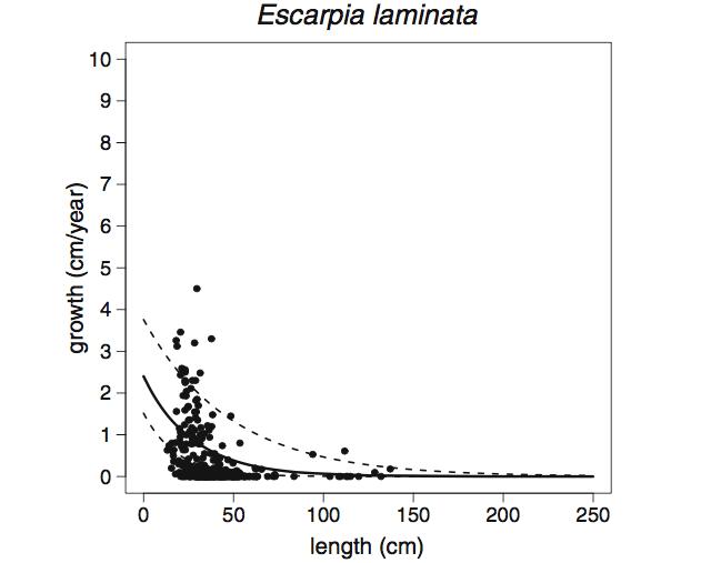 на дне Мексиканского залива обнаружили червя-долгожителя