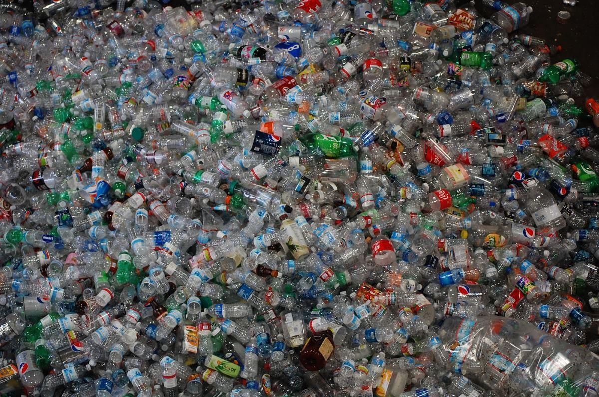 бактерии научились поедать бутылочный пластик