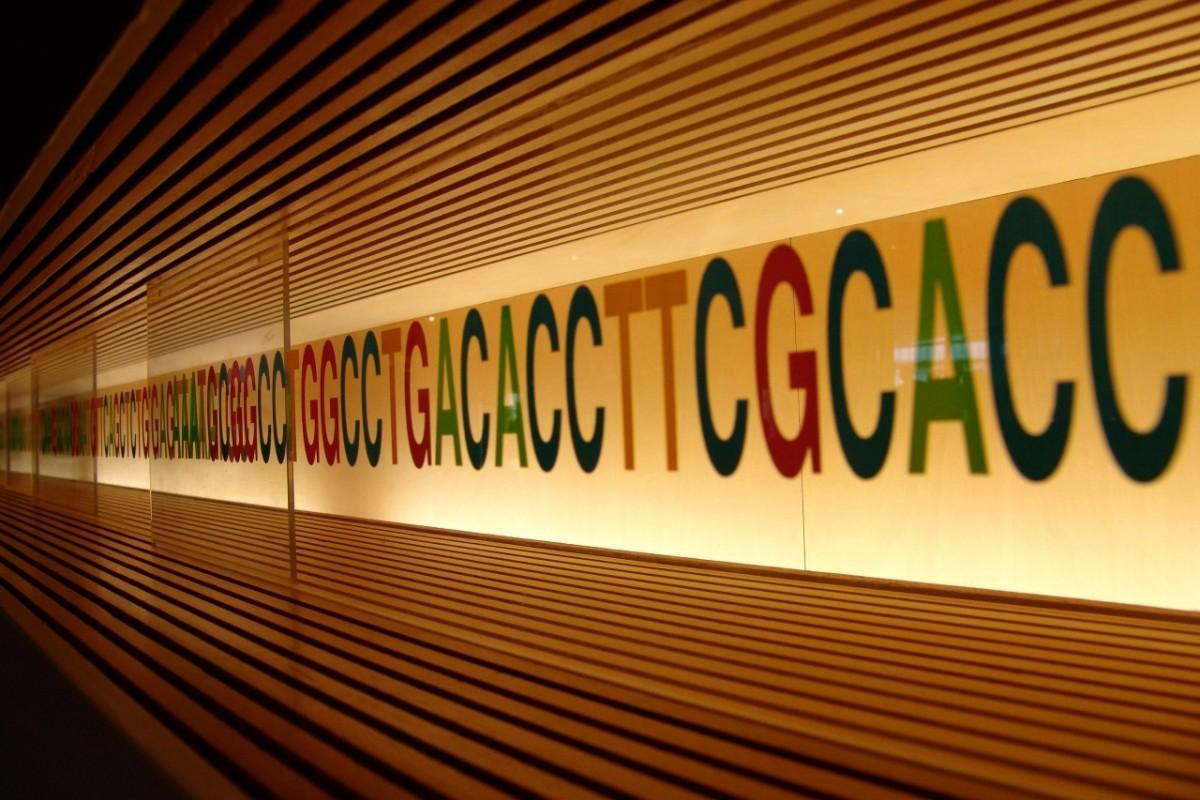 Ученые доказали взаимное усиление вредных мутаций