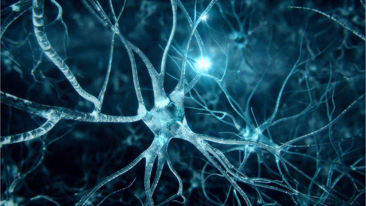 Новая методика тренировки мозга поможет контролировать эмоции и бороться с посттравматическим стрессом