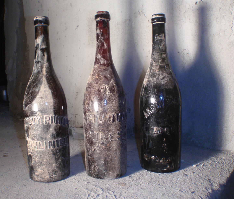 микробиологи исследовали процесс старения столетнего пива