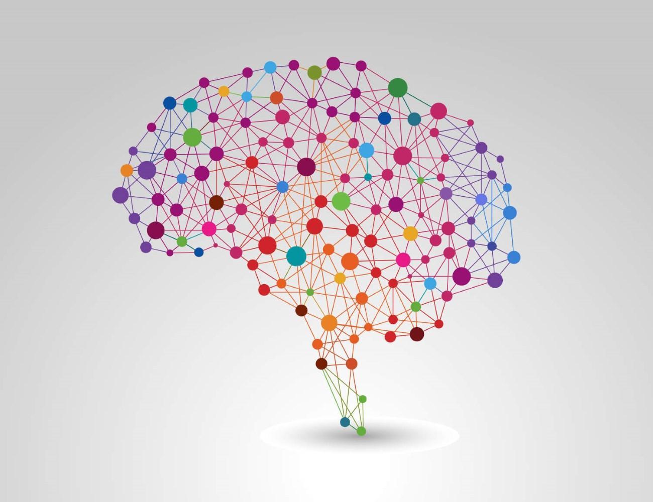 как с помощью игры создать 3D-схему мозга
