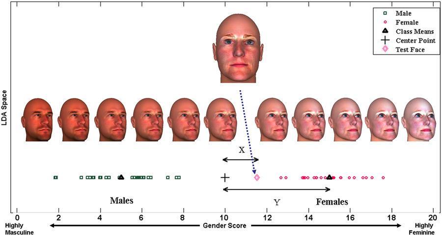 аутизм и маскулинность черт лица
