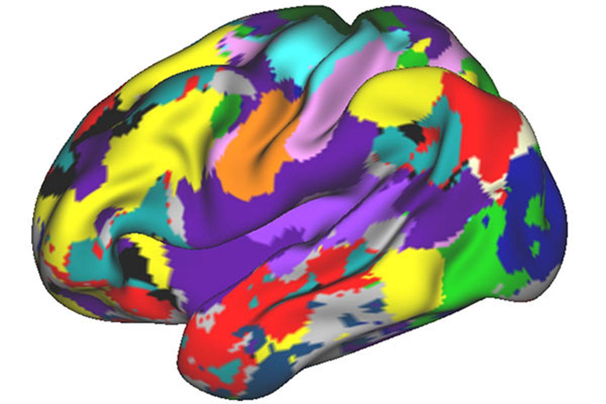 Нейровизуализация станет основой клинической неврологии