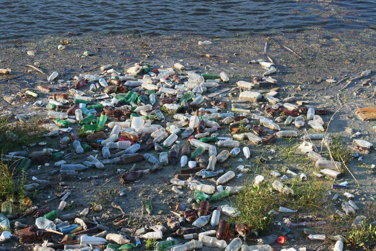 Пластика в океане может стать больше, чем рыбы