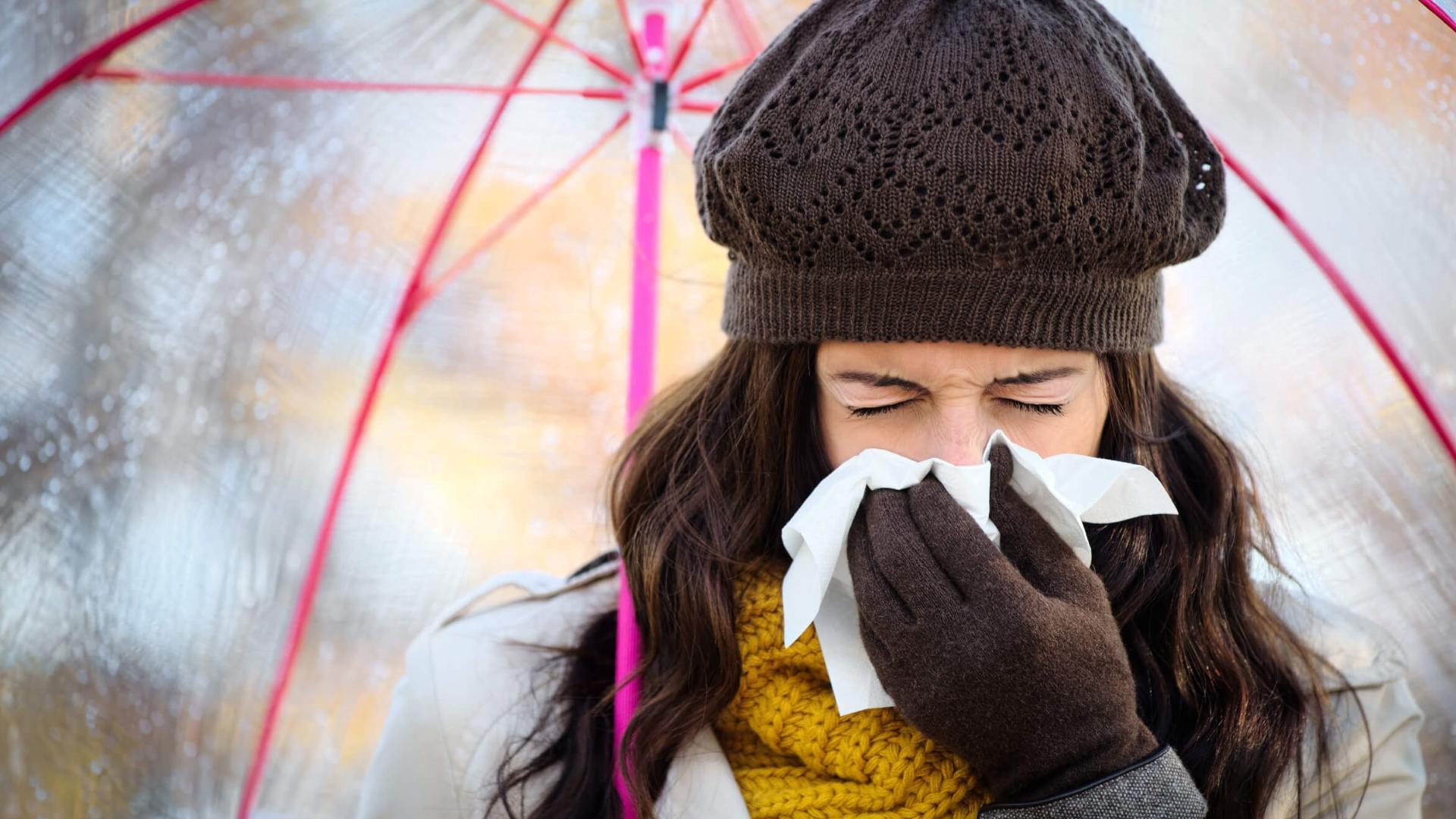 Сардины помогли ученым спрогнозировать вспышки гриппа